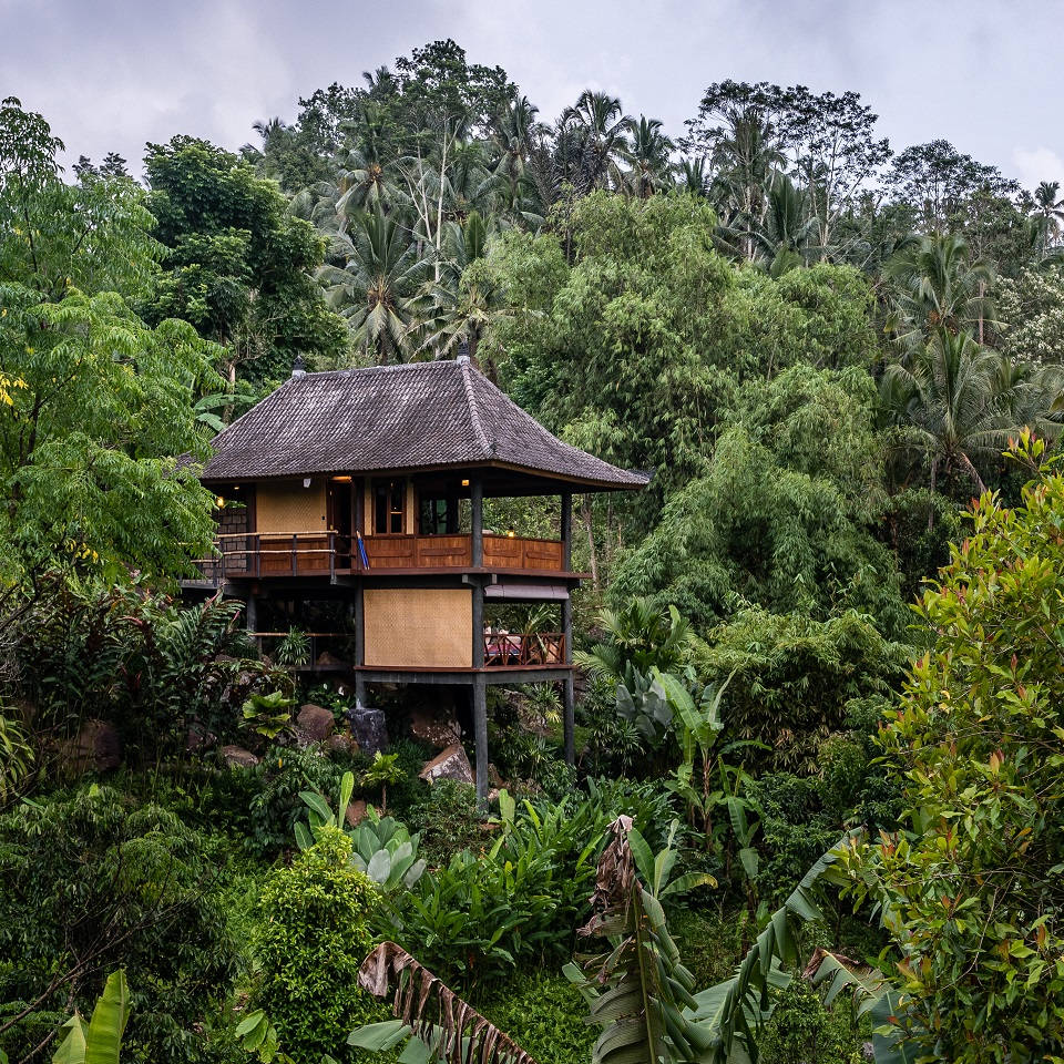 Bali Indonesia Mountain Resort