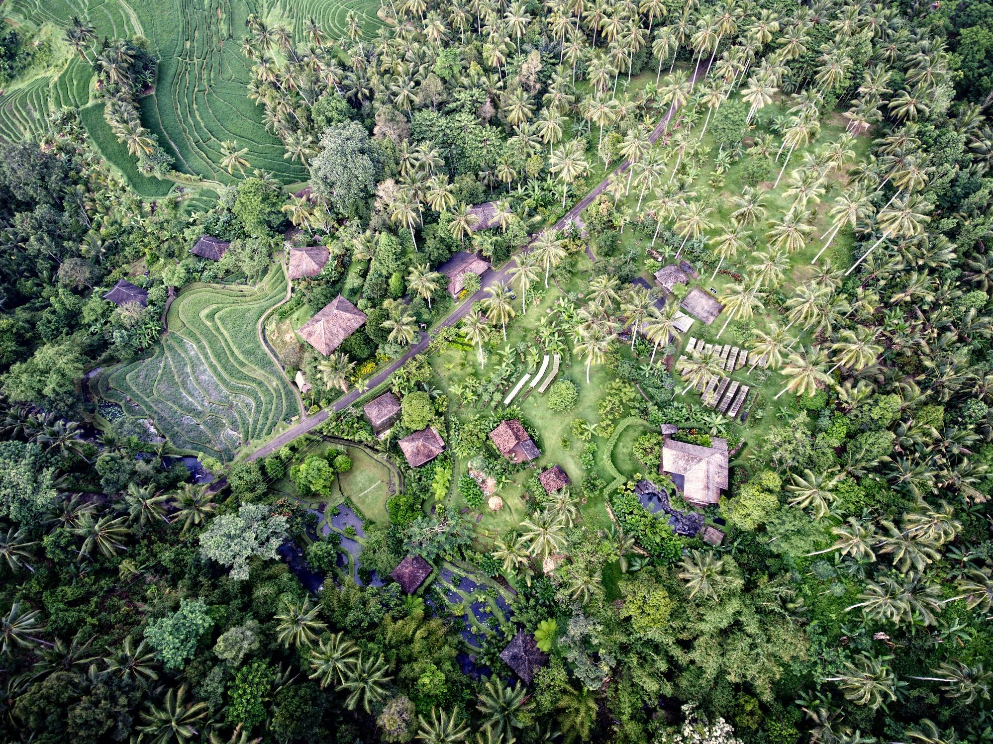 Bali Eco Stay from the air