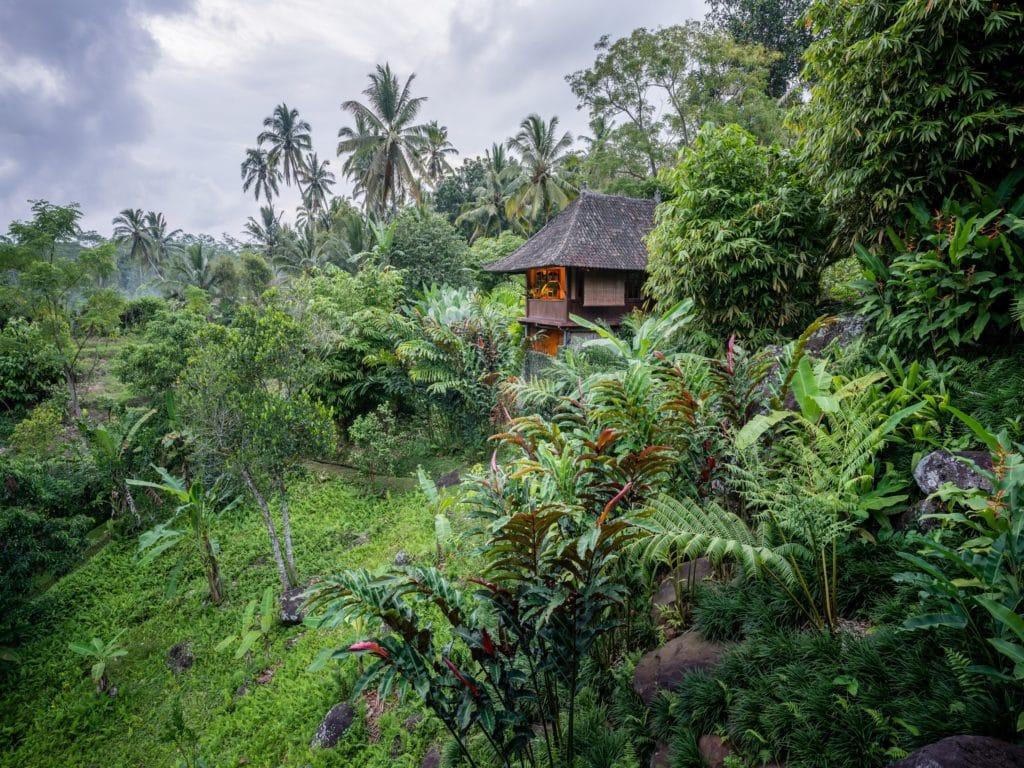Little Padi Treehouse Bungalow Bali Eco Stay